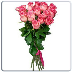 Pink Roses Bouquet - 15 Stems