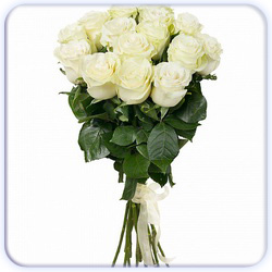 White Roses Bouquet - 15 Stems