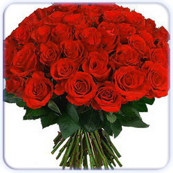 Red Roses Bouquet - 51 Stems
