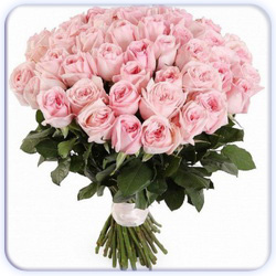Pink Roses Bouquet - 51 Stems