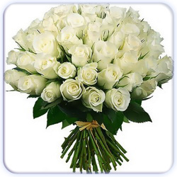 White Roses Bouquet - 51 Stems