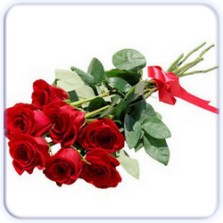 Red Roses Bouquet - 7 Stems