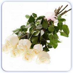 White Roses Bouquet - 7 Stems